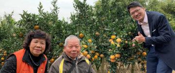 ▲青銀聯盟總經理賴炆驞(右)在陳姓農友(中)的茂谷柑果園裡,開心的與大家拍照合影。左為嘉義縣傑出農民協會理事長郭素貞。